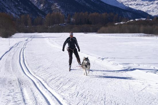 découverte du ski joering
